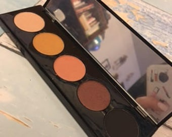 5 color eye shadow palette in midnight colors with interchangable pans