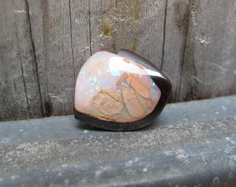 Koroit Opal Nut