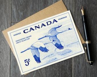 whooping cranes, birdwatcher gift ideas, ornithologist gifts, ornithology birthday cards, Whooping Crane cards, Whooping Cranes sympathy