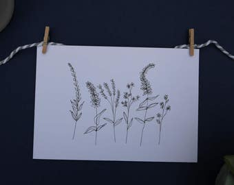 Botanical card - hand drawn and made in the UK.