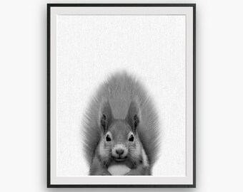 Squirrel nursery Print, peekaboo print, Nursery Art, Digital Download, Large Printable Poster, Forest Animals, red squirrel, Black and White