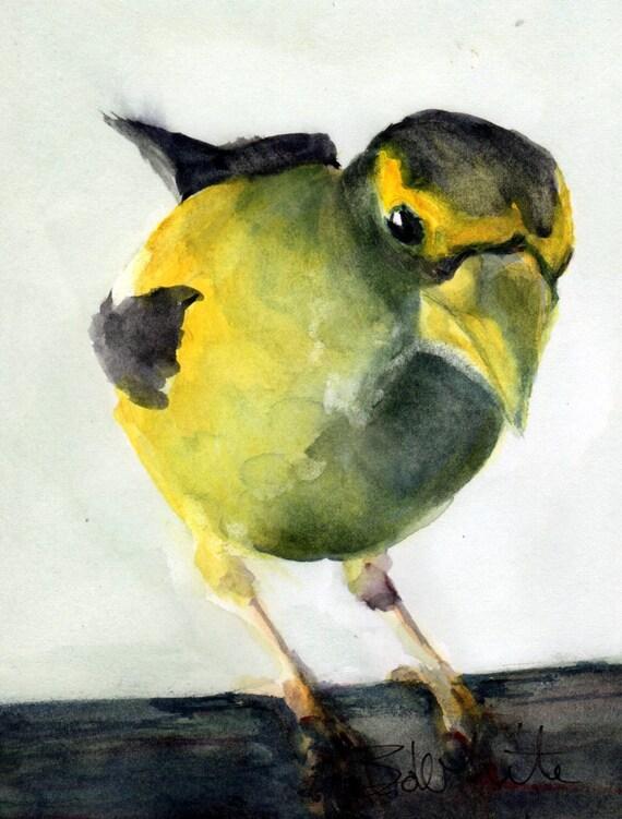 Evening Grosbeak original #13 - original watercolor - painting by Bonnie White - songbird - art - watercolor painting