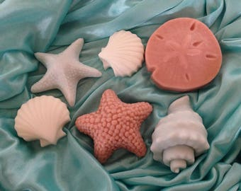Seashell Soap collection (6), Sand dollar, conch, seashell, starfish