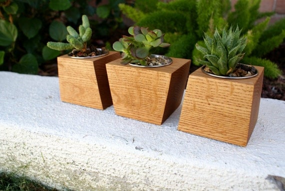 Modern Oak Wood Boxcar Planter