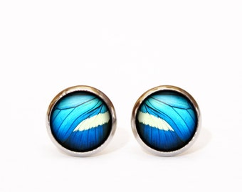 Blue Butterfly Earrings stainless steel stud earrings black cute earrings Stainless steel surgical earrings hypoallergenic Gift for Her UK