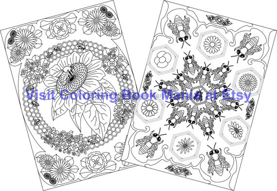 TREASURE the BEES - Note Cards to COLOR - Bees on Sunflower x2 and Bees Dancing at the Hive x2 - 4 Cards/envelopes