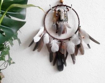 Dream catcher, dreamcatcher, head of Buffalo, Native American, ethnic, Bohemian, skull wall decoration
