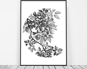 Black and White Leaves Print, Botanical Print, Plant Print, Leaf Photography Print, Botanical Art Poster, Nature Art Print, Affiche Scandi