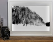 Fine art photography Black & White - INSTANT DOWNLOAD- 5 files high resolution 300 DPI  -  Trees on snow #01
