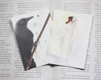 Two Birds Postcards