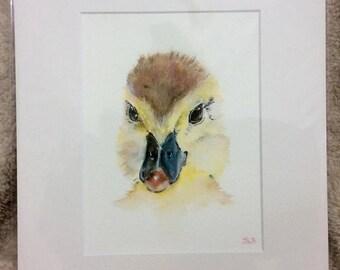 "Little Ducky 12"" x 10"" Original watercolour painting"