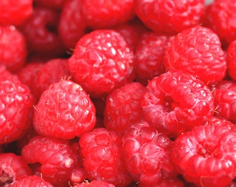 ORGANIC Red Raspberry Oil UNREFINED Cold Pressed, Undiluted, Pure Carrier Oil, Red Raspberry Seed Massage Oil, Facial Oil, Body Oil,Hair Oil