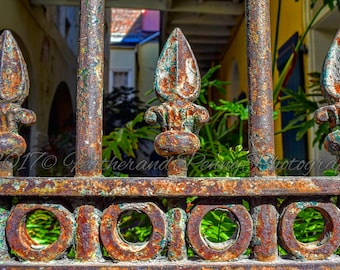 New Orleans Photography, New Orleans Art, New Orleans Architecture, New Orleans Iron Fence, New Orleans Prints, French Quarter Photos, Fence