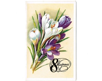 Unused Soviet Double Postcard: USSR International Women's Day Postcard/Russian March 8 Card/Old Card Mothers Day with Spring Saffron Flowers