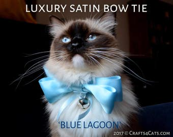 Blue Satin Cat Bow Tie Large - Cat Bow Tie with Collar & Bell - Fancy Satin Cat Bow Tie - Satin Collar for cat