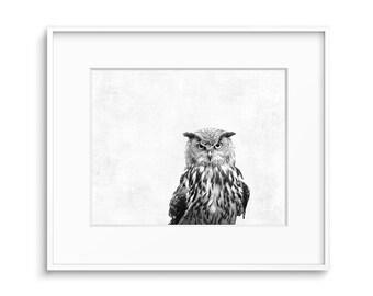 Owl Decor, Bird Prints, Owl Art, Wall Art, Printable Art, Digital Download, Art Prints, Owl Wall Decor, Black and White, Modern, Art, Prints