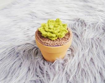 Crochet Plant - Succulent