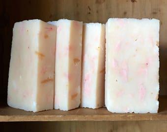 Fruity Bar Handmade Soap