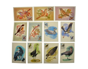 Original Vintage MAXIcard 1981 1982 First Day Stamp 1 Set Quantity 11 Soviet Postage Stamp Ephemera Birds Collecting