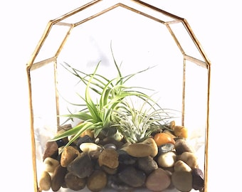 Terrarium, Little Barn Terrarium, Glass Terrarium, Air Plant, Air Plant Terrarium, Gold Terrarium, Small Terrarium, Farmhouse, Barn, Rustic