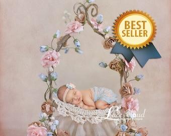 Newborn Digital backdrop background  newborn baby  girl  romantic flowers iron bed vintage retro prop  3 JPG files / 149