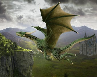 Magic Flying Dragon digital background backdrop for photography.