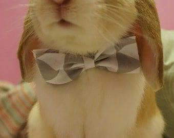 Bunny Bow Tie Grey and White
