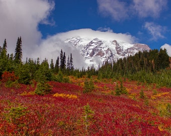 Mt Rainier in the Fall