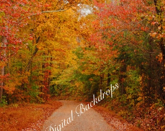 Fall Foliage Digital Backdrop