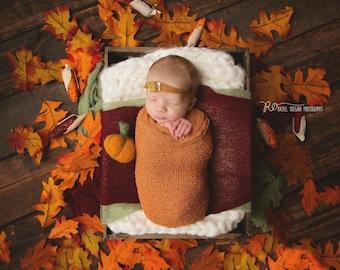 Needle Felted Pumpkin Newborn Photo Prop