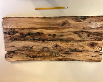 Unique Rustic Wooden Sign/Panel - Live Edge - Insect Carved Ash Tree Boards