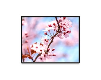 Spring. Photo print or pack of 5 postcards