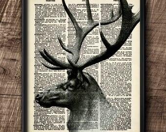 Elk  · Instant Download · Dictionary · Wapiti · Vintage · Wall · Cervus canadensis · Printable · Digital File #