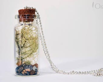 Preserved Moss Necklace, Moss Terrarium Necklace, Moss Necklace, Bottled Moss Necklace,