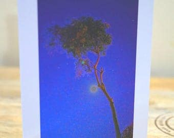 Moonlit Lone Tree - Blank Card / All Occassion Card with Envelope