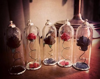 The Enchanted Rose/Cursed Rose Necklace