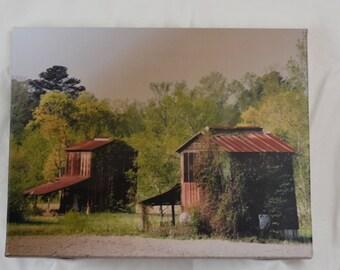 NC tobacco barns  11 X 14