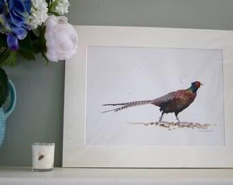 Pheasant original watercolour painting