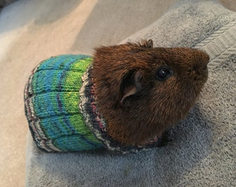 Guinea Pig Sweater Made To Order