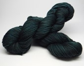 Slytherin in Denial  on Salsa Monkey Worsted Weight 100%  Merino Wool darkest teal tonal kettledyed