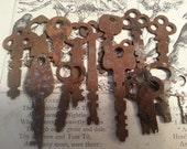 25 Shabby RUSTY Keys ... Steampunk Art Craft Supply, AS FOUND