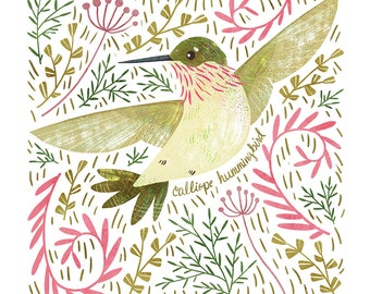 Calliope Hummingbird Art Print - square digital illustration by Stephanie Fizer Coleman
