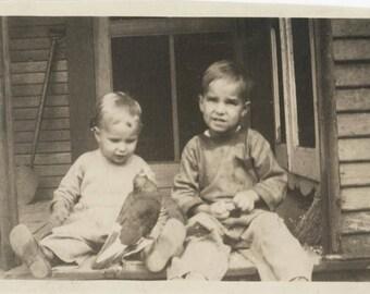 vintage photo 1910 Two Little Boys on Porch Pet Pigeon Bird