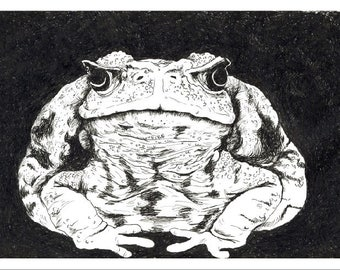 """Disapproving Toad 6"""" x 4"""" mad animal print"""