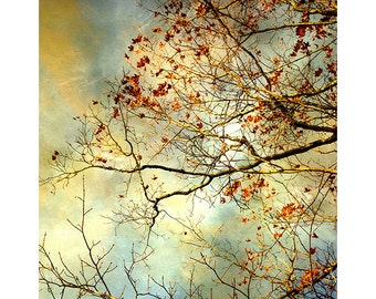 Autumn Landscape Photography, Stormy Sky Print, Red Gold Wall Decor, Abstract Art, Nature Photography, Fine Art Photography