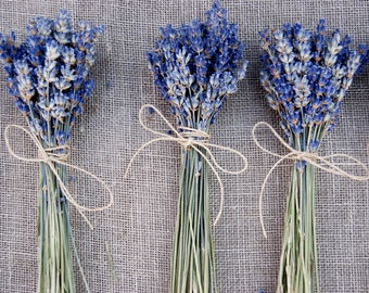 10  Small English Lavender Favor Bouquets for Tables Arrangements, Boho, Rustic, Garden or Simple Wedding Style