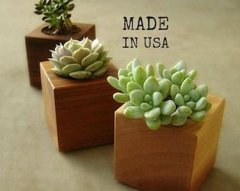 Wood Succulent Planters, Modern Succulent Pots, Gardener Gift, Home Decor, Set of Three