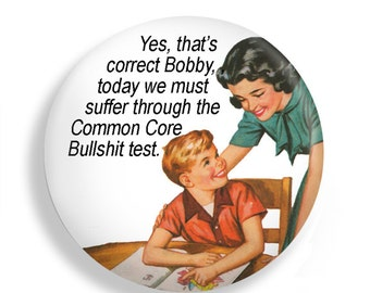 Funny Snarky Common Core Gift Magnet for Teachers