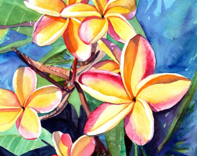 Plumeria Watercolor,  Tropical Flowers, Frangipani Art, Kauai Fine Art, Original Plumeria Paintings,  Hawaiian Flowers, Hawaii Watercolors