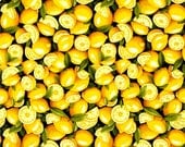 FQ ~ Half Yard ~ By the Yard ~ Lemon Cotton Fabric ~ Farmer John's Garden Party ~ Fabri-Quilt Cotton Quilt